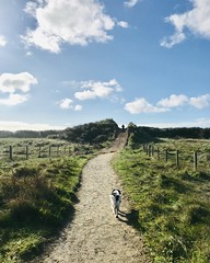 Photo of Catching the Sun Sunday Afternoon walk at Pembrey Country Park