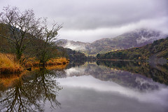 Llyn Gwynant (abstract_effects) Tags: sonyalpha7m3 snowdonia mountain lake reflection autumn colours light november 2019 llyngwynant northwales winter weather trees