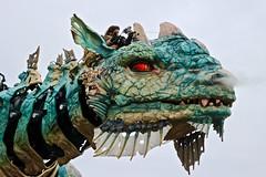 Le Dragon de Calais .