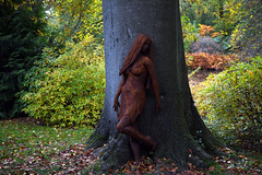 Savill Garden 30 October 2019 007 (paul_appleyard) Tags: savill garden october 2019 sculpture autumn graeme lougher