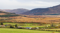 Machrie Moor Isle of Arran (Dave Russell (1.5 million views thanks)) Tags: machrie moor isle island arran clyde west western scotland ecosse uk britain land landscape scape view vista scene scenery farmland farm mountain mountains hill hills moorland outdoor nature photo photograph photography canon eos eos7d 7d
