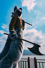 A Brave Journey (hackdragon) Tags: infurnity 2019 fursuit furry beast kemono warrior cosplay axe