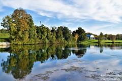 Karlovac, Croatia - Autumn fluffy reflection in river Korana (Marin Stanišić Photography) Tags: karlovac croatia river korana fluffy reflection autumn karlovaccounty nikon d5500