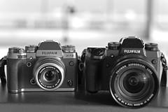 my Fujifilm dream team (eucalli) Tags: eucalli einfarbig fujifilm xf35mmf2rwr xt2 fujifilmxt2 xh1 fujifilmx nikon nikonfx d810 nikkorafs85mm118g monochrome monochrom gear fujigear blackwhite blackandwhite bw