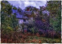 Hiding behind autumn.... (Sherrianne100) Tags: hss autumn abandoned dilapidated naturetakesover oldhouse rural ozarks missouri