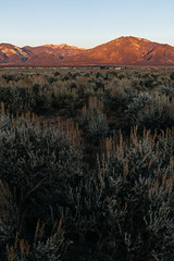 Another great sunset (M///S///H) Tags: alpenglow clearskies fullframe landscape mountains outside pointandshoot range rx1rii sagebrush sangredecristo sony