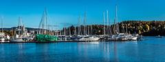Harbor - autumn (Thor Edvardsen) Tags: bestumkilen harbor harbour fall høst autumn water sea seaside seaview canon canon5dsr ef2470mmf28liiusm oslo norway norge nordic