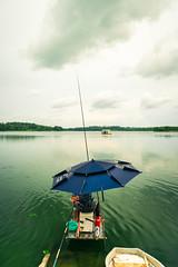 Fishing rod (Cadicxv8) Tags: fishing fishermen rod lake sky water blue green umbrella