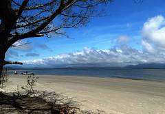 Nuvens na praia (Sophie Carrière) Tags: praia sol céu nuvem azul sombra árvore mar