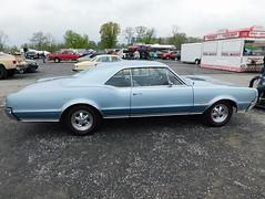 1967 Oldsmobile 4-4-2 (splattergraphics) Tags: 1967 oldsmobile 442 olds olds442 carshow carlisle springcarlisle carlislepa