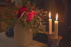 Roses in candlelight