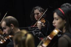Violín (Guillermo Relaño) Tags: mendelssohn sueño noche verano especial pqee ¿porquéesespecial camerata musicalis teatro nuevoapolo madrid guillermorelaño sony a7 a7iii a7m3 violin orquesta orchestra