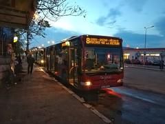 MB O530 Citaro FACELIFT #ULV Transbus Buzău pe linia 8 la capătul Gară (Andrei.CFRbv) Tags: ulv