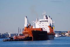 Saimaagracht (jelpics) Tags: freedom tug tugboats saimaagracht cargoship commercialship commoncarrier merchantship boat bos boston bostonharbor bostonma harbor massachusetts ocean port sea ship vessel massport