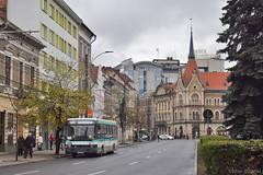 493 - R - 31.10.2019 (VictorSZi) Tags: romania clujnapoca ctpcluj transport publictransport autumn toamna nikon nikond5300 bus autobuz