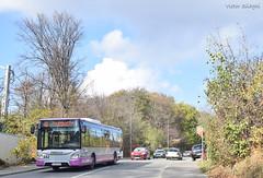 842 - 40 - 01.11.2019 (2) (VictorSZi) Tags: romania clujnapoca ctpcluj transport publictransport autumn toamna nikon nikond5300 bus autobuz