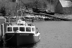 Ashore (halifaxlight (back in December)) Tags: canada novascotia aspotoganpeninsula northwestcove boats dock slipway shed sea fishingvillage tiedup bw