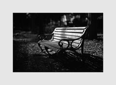 (※ken※) Tags: film blackandwhite monochrome leicamp summarit
