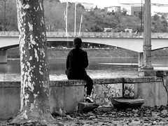 Watching the river flow (rgrant_97) Tags: portugal coimbra outuno autumn parque rio mondego avenidaemídionavarra