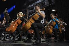 Contrapicado de cellos (Guillermo Relaño) Tags: mendelssohn sueño noche verano especial pqee ¿porquéesespecial camerata musicalis teatro nuevoapolo madrid guillermorelaño sony a7 a7iii a7m3 cello chelo violonchelo contrapicado ensayo