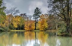 Dreary grey days...xx (shona.2) Tags: trees reflections nature scotland eastlothian gosfordestate pond water lake view autumnal autumn