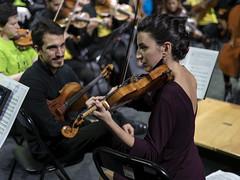 Entre violines (Guillermo Relaño) Tags: mendelssohn sueño noche verano especial pqee ¿porquéesespecial camerata musicalis teatro nuevoapolo madrid guillermorelaño sony a7 a7iii a7m3 violin ensayo orquesta orchestra