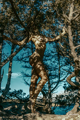 Juniper (whitenoisephotography1) Tags: juniper trees seascape shades body naked nude art rocks sardinia sardegna sky
