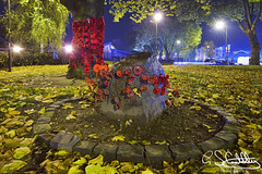 The Peace Tree Memorial, Blakenall, Walsall 03/11/2019 (Gary S. Crutchley) Tags: peace victory tree blakenall memorial uk great britain england united kingdom urban town townscape walsall walsallflickr walsallweb black country blackcountry staffordshire staffs west midlands westmidlands nikon d800 history heritage local night shot nightshot nightphoto nightphotograph image nightimage nightscape time after dark long exposure evening travel street slow shutter raw remembrance war world one i 1