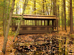 """""""Large Pond with Covered Bridge"""" (Bruces 51) Tags: whiting forest dow gardens midland michigan covered bridge pond"""
