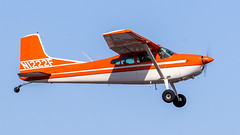 Cessna A185F Skywagon N1222F (ChrisK48) Tags: kdvt n1222f aircraft skywagon airplane 1975 cessnaa185f dvt phoenixaz phoenixdeervalleyairport