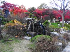 DSCN5590 (fernando isler caguete) Tags: fernandoislercagueteleonracagueteamandaannemariecaguetecriannarhinoacaguetearracamillemendozakrystelpaltadosoulkoreanam iislendgaangchonrailbilegyeonbokgungplacemyeondongeverlandseoulgardenofthemorningcalmnseoultowerbtslinefriendsnangjansanhanokvillagehanbokwintersonatabongabong orientalmindoro nami island gangchon rail bike seoul south korea