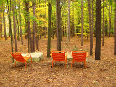 rocks and chairs (Bruces 51) Tags: whiting forest dow gardens midland michigan