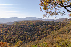 Fall Blue Ridge Parkway 2019 2 (rschnaible) Tags: fall colors landscape outdoor autumn forest blue ridge parkway north carolina the south mountains