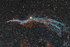 The Witch's Broom (bicolour) (Dark Arts Astrophotography) Tags: astrophotography astronomy asi1600mc astrophotographyastronomy veil veilnebula western space sky stars star science night nature natur nebula nightsky ngc cygnus astrometrydotnet:id=nova3725274 astrometrydotnet:status=solved