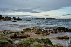 Low Tide (Stueyman) Tags: sony alpha a7 a7ii wa westernaustralia au australia rockingham perth rocks green seaweed sky clouds waves water sea ocean indianocean beach sand outside availablelight zeiss batis batis240cf 40mm