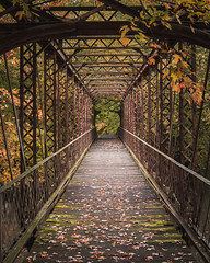 Bridge In Gold (tylerjacobs) Tags: sony a6000 sigma 30mm f14 fall colors foliage midwest weather seasons