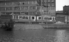 Tram op de kade (railfan3) Tags: amsterdam amsterdamsetrams amsterdamtrams amsterdamsetram gvb gemeentevervoersbedrijf openbaarvervoer amstelbrouwerij mauritskade grijzetrams greytrams vintagetrams retrotrams enkelgeledetrams beijnestrams gt6 gelenktriebwagen trams trolleys tramcars tram tramway triebwagen tramwagens trammaterieel trammetjes tramstellen tramwegmaterieel tramtracks tramrijtuigen tramstramlijnen tramlijn10 trams1972 publictransport ouderwetse oudetrams oudewagens zijaanzichttrams amsterdams amsterdamse oldtimers oldtrams streetcars strassenbahnwagen strasenbahn streetscene nederlandse 2ggeledetrams gvb584 nederlandsetrams eenmanswagens ponsebaan tijdelijketramsporen singelgracht