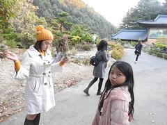 DSCN5580 (fernando isler caguete) Tags: fernandoislercagueteleonracagueteamandaannemariecaguetecriannarhinoacaguetearracamillemendozakrystelpaltadosoulkoreanam iislendgaangchonrailbilegyeonbokgungplacemyeondongeverlandseoulgardenofthemorningcalmnseoultowerbtslinefriendsnangjansanhanokvillagehanbokwintersonatabongabong orientalmindoro nami island gangchon rail bike seoul south korea