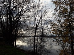 shades of grey.... (angelinas) Tags: greysky grey trees riverside silhouettes arbres arbeli moody mood sombre outdoor nature landscapes paysages paesaggio dark earthy river clouds nuageux cloudy reflections light lumiere shadows montreal quebec canada
