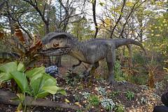 Tyrannosaurus Rex (Dionepsoc) Tags: bronxzoo dinosaursafari tyrannosaurusrex dinosaur