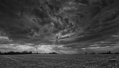 Mother Nature (Dan H Boyle Photography) Tags: clouds cloudy havering london storm stormy swirl canon canondslr canon700d 700d monochrome blackandwhite field fields countryside essex essexlandscape essexlandscapes farm farmland