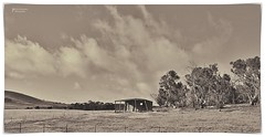 Duotone Shed (John Panneman Photography) Tags: merigansheepfarm tarago mountfairy bungendore nsw australia panneman nikon d610 sheep farm station working merino field agriculture timdemestre sheepfarm crutching drenching shearer lamb ewe ram homestead shearing shearingshed silo dog workingdog stars milkyway road silos night fog morning light cloud