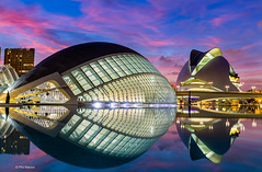 Ciudad de las Artes y las Ciencias - City of Arts and Sciences, Valencia (Phil Marion (177 million views - THANKS)) Tags: sunrise sunset dusk fun shadows hdr snow art model feet canon5diii 5d3 canon toronto canada candid architecture street portrait landscape wildlife nature explored bird urban flowers macro insect sony nikon longexposure ontario phil marion philmarion philippemarion explore skyline cityscape home sky water outside beach dog old young indoors travel night smiling