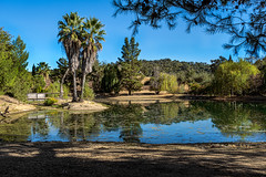 Carmody McKnight Winery (larwbuck) Tags: autumn bridge california fall landscpe pond reflection sky trees water winery