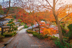Asakura (Chiara Salvadori Ph) Tags: chiarasalvadori travel photography asakura asia autumn beautiful colors explore foliage giappone japan kyushu landscape lifestyle maple momiji momijigari monument nature nikon november orient outdoor premium quality reportage scenery street sunset travelling tree village