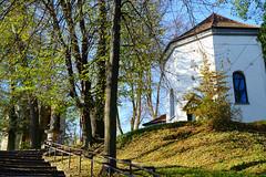 Schody na Stare Miasto (Rrrodrigo) Tags: dobczyce poland autumn church belfry old town stairs