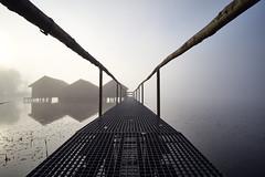 ohne Titel (stefandinkel) Tags: stefandinkel leicam10 wasser kochelsee schlehdorf bootshaus nebel sonnenaufgang morgennebel voigtländercolorskopar21mm35