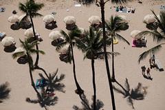 DSCF4175 (jhnmccrmck) Tags: hawaii honolulu waikiki fujifilm fujifilmxt1 xt1 xf1855mm classicchrome beach palms