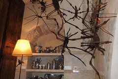 Spiders (unicorn7unicorn) Tags: люстра полка музей паук посуда wah