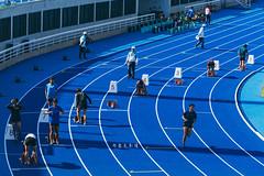 D69_1566 (brook1979) Tags: 全國運動大會 全運會 2019 桃園 運動會 台灣 運動 比賽 田賽 競賽 sport taiwan taoyuan